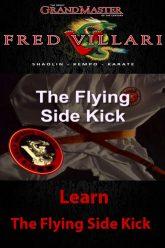 flying-side-kick-500×750